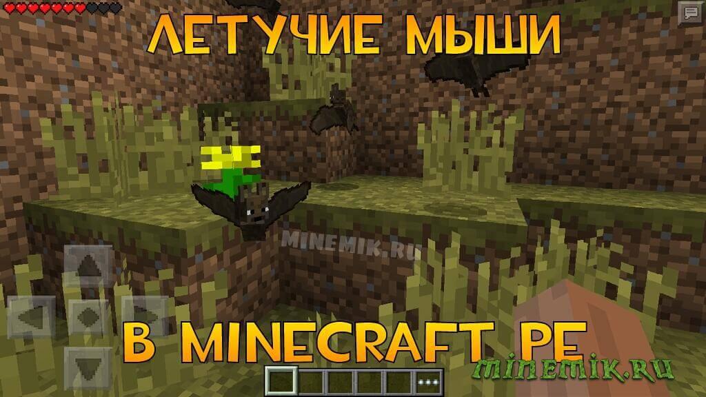 В Minecraft PE были добавлены летучие мыши!